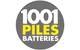 Logo 1001 Piles